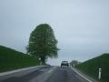 Frühjahrsausfahrt 2013